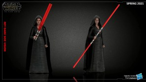 Star Wars Black Series Darth Rey
