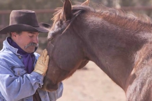 PHOTO: From Veteran's, Firefighter, EMT's to Recovery Addicts/Alcoholics the Equine Dynamic represents healing and connection.