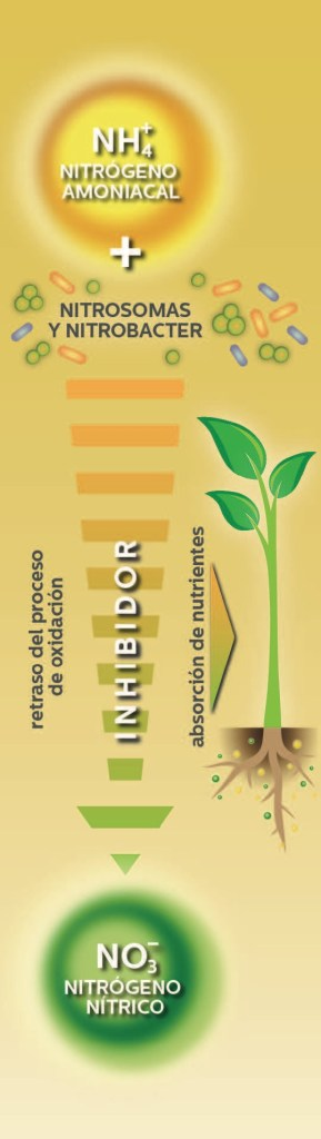 Herosol oro inhibidor