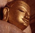 Audio Dharma Free Guided Meditation, Health Room