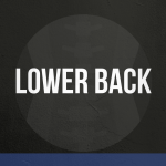 MOBILITY EXERCISES - Lower Back drills