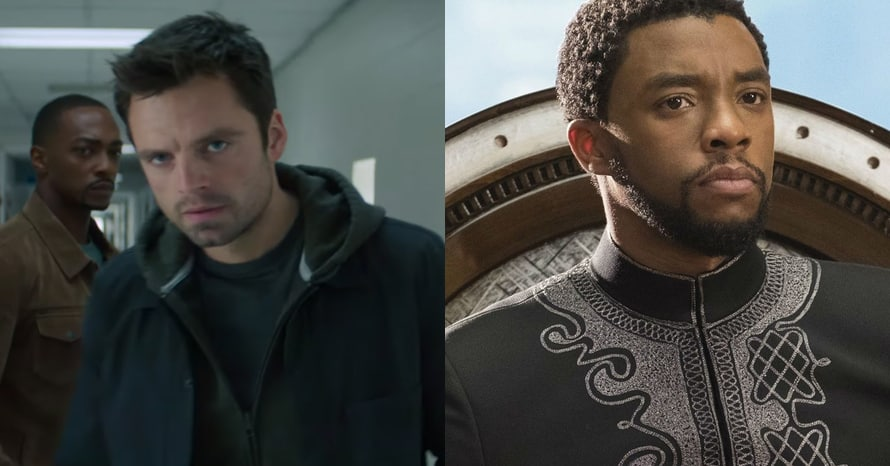 Falcon Winter Soldier Black Panther