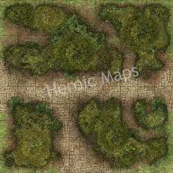 forest maps roads boards geomorphs heroic countryside combined six together wilderness