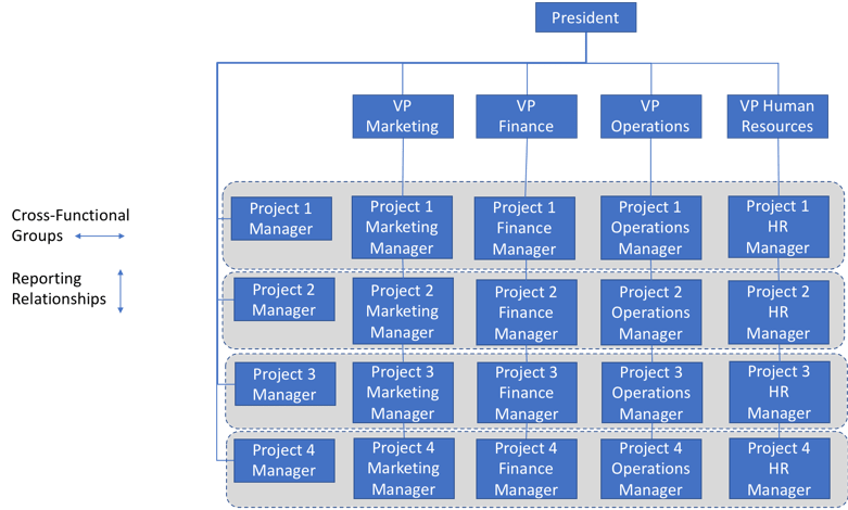 Vertical Horizontal And Matrixed Organizations And Why