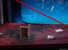 Tannhäuser und der Sängerkrieg auf der Wartburg im Stadttheater Minden