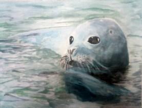 Seehund auf Leinwand