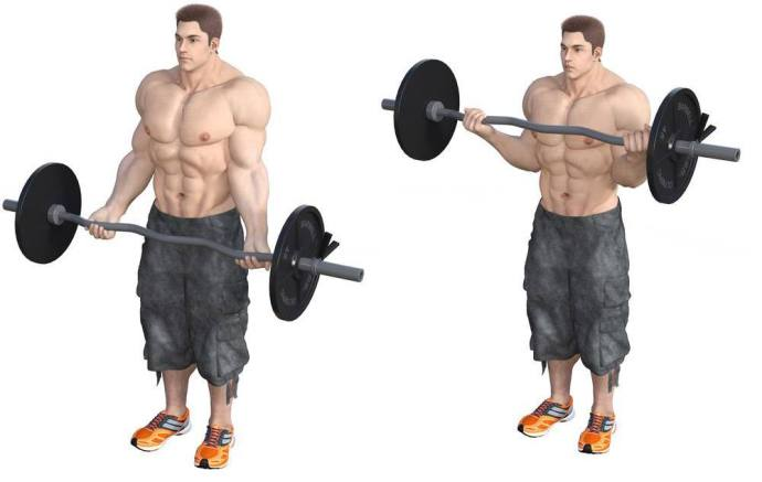 How much does an ez bar weigh