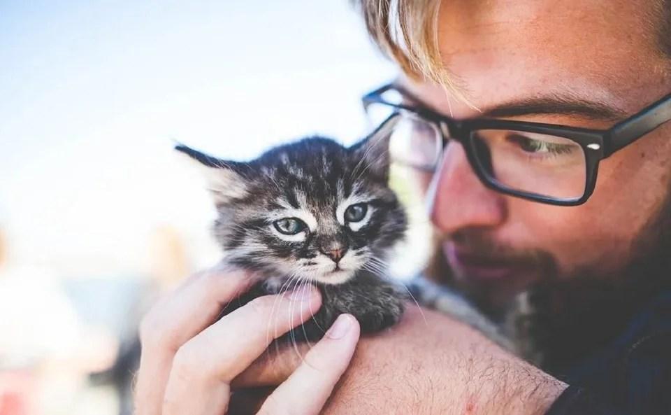 mug chat cadeau idéal pour fans de Minet