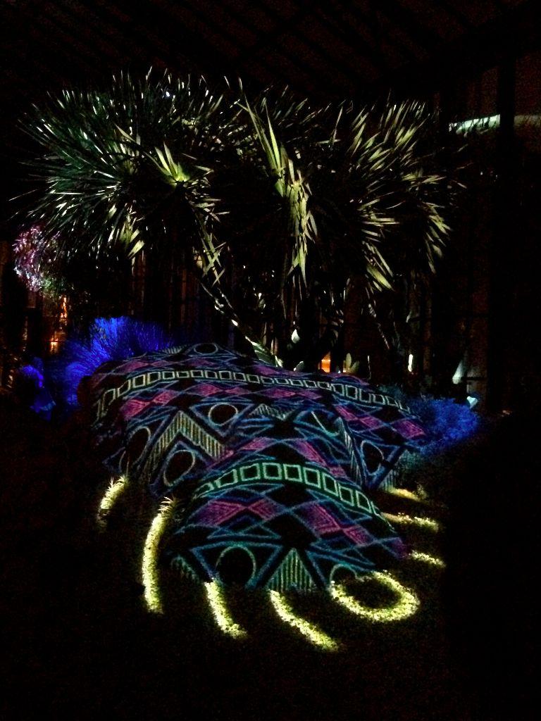 New Longwood Gardens exhibit