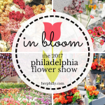 In Bloom {This Year's Flower Show}
