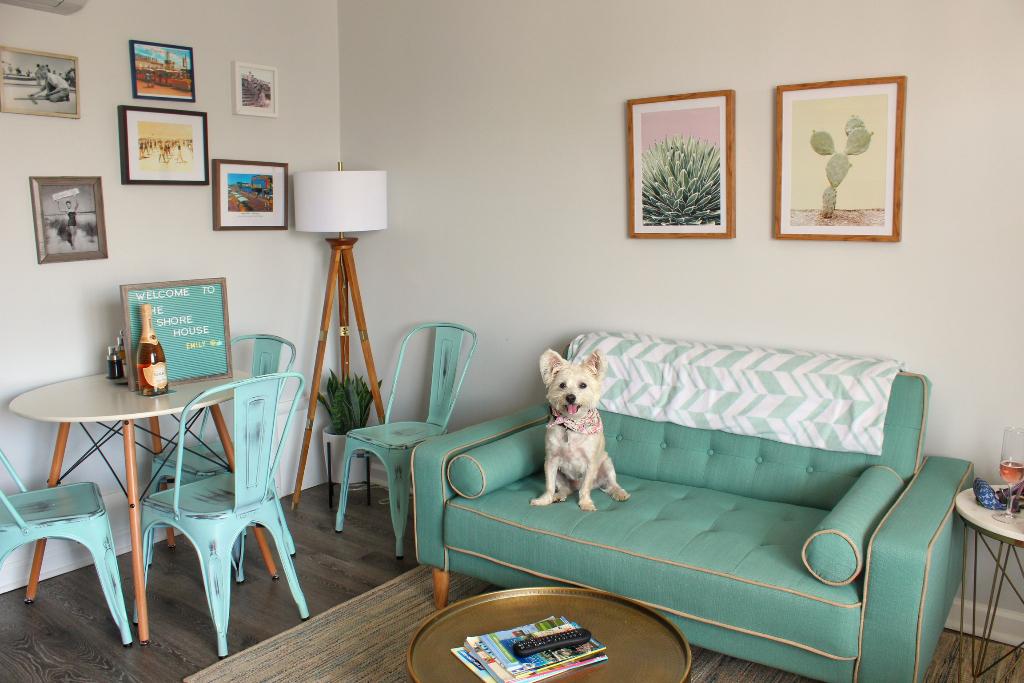 Dog Friendly Hotel Wildwood