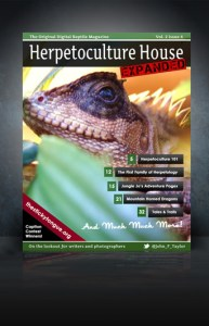 Herpetoculture House Vol. 2 Issue 4 Cover