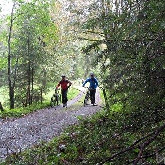 Patschnasser Wald mit Bikern.