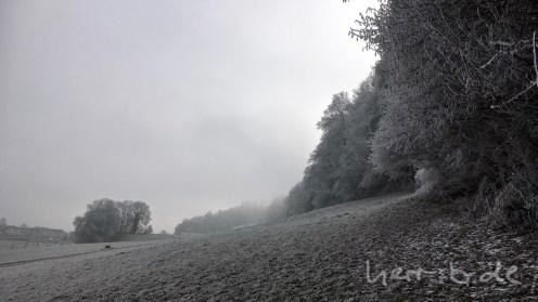 Der untere Waldrand mit Frostüberzug.