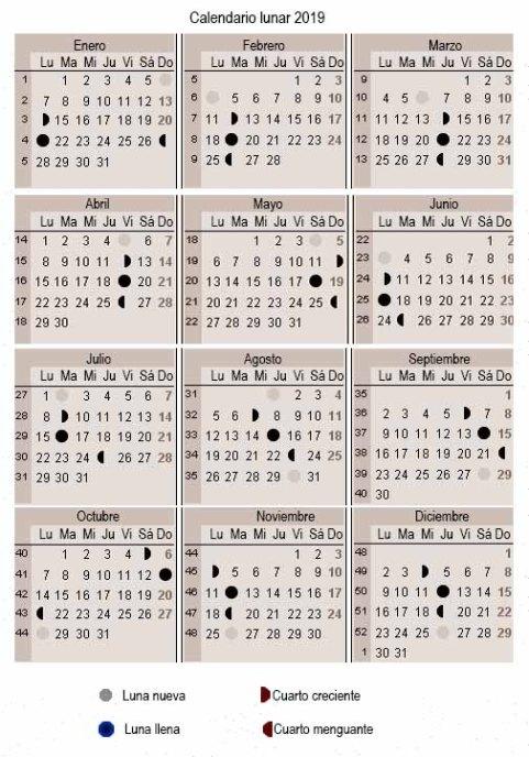 Calendario Lunar 2019 Espana.Calendario Lunar De Junio 2019 Hashtoken Net