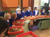 At the artefact sorting trays