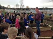 Science Year 4 Plants 2014