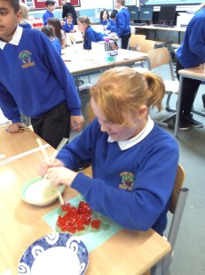 Year 5 science