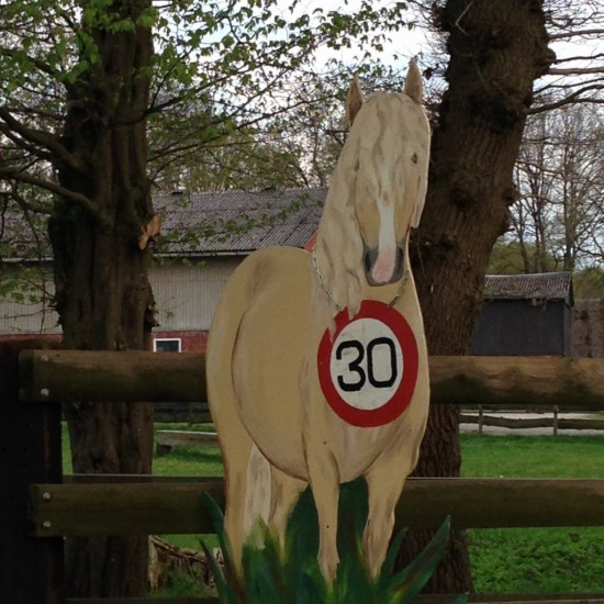 Tempo-30-Pferd in Dorfhagen
