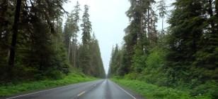 Der Evergreen State :) ©HerrundFrauBayer
