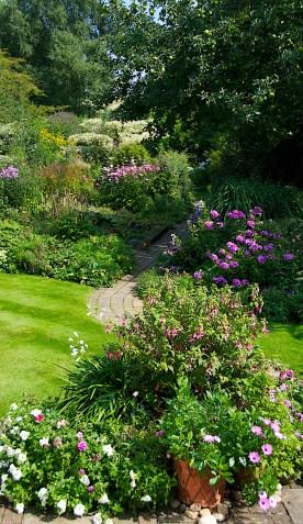 Heather Osborne's garden