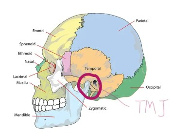 TMJ dysfunction?? Pain in the jaw?? #osteopathyworks