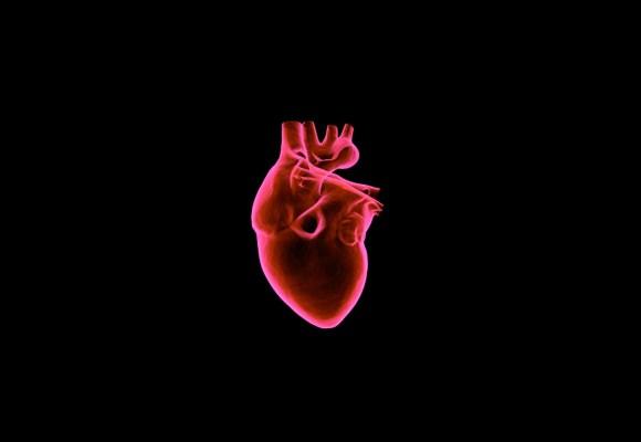 Herz in Gefahr: Grippewelle und Herzmuskel