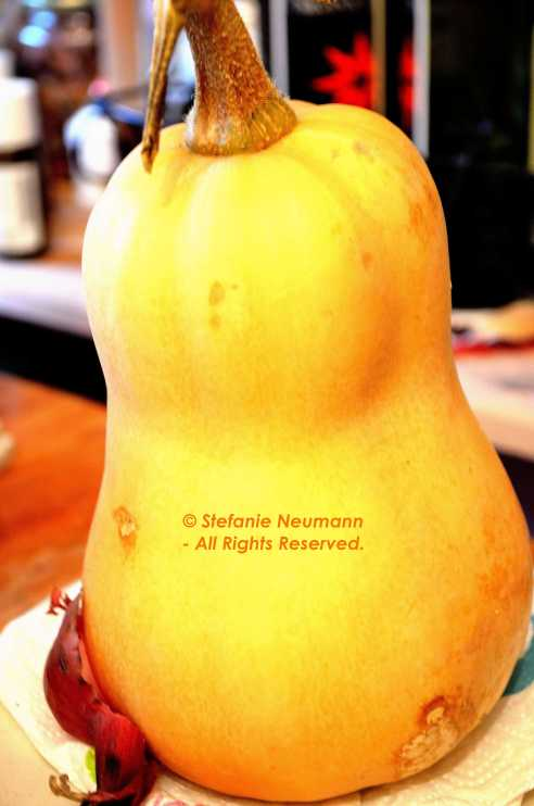Butternut Squash © Stefanie Neumann - All Rights Reserved.
