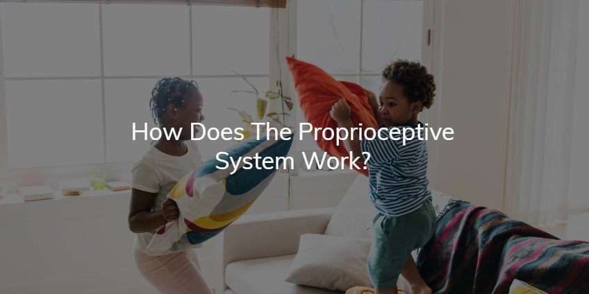 how does the proprioceptive system work