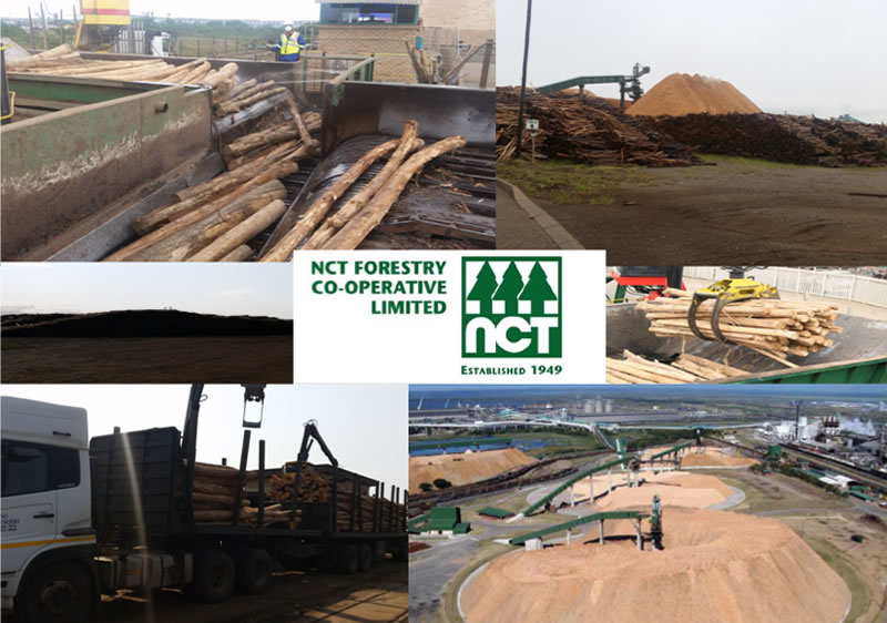 NCT Forestry Co-operative