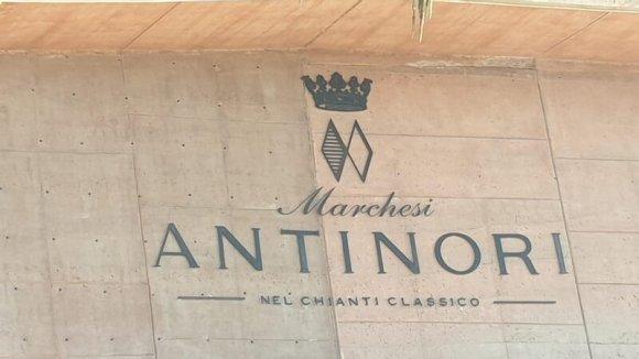 Sommeliere Isabeel Gil von Bed & Wine beim Weingut Antinori