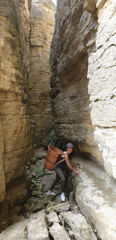 Weinort Hessigheim bei den Felsengärten