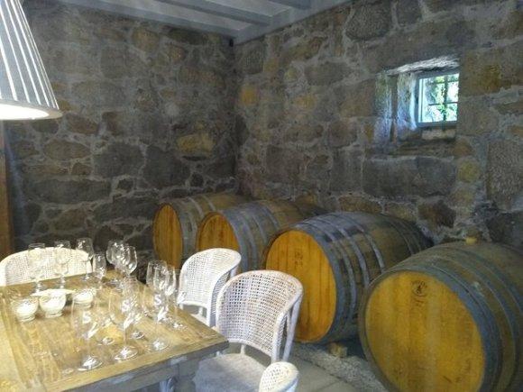 Fässer Alvarinho Weintour Rias Baixas Galicien Pazo Senorans Sommeliere Isabel Gil Bed & Wine in Hessigheim Weinproben