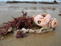Doll's head among the seaweed