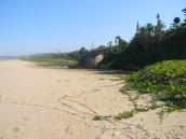 Mvusi River estuary between Elysium and Ifafa