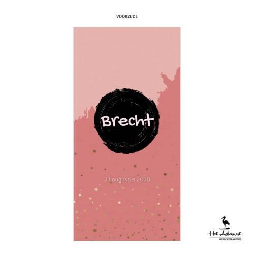 Brecht_web-vz