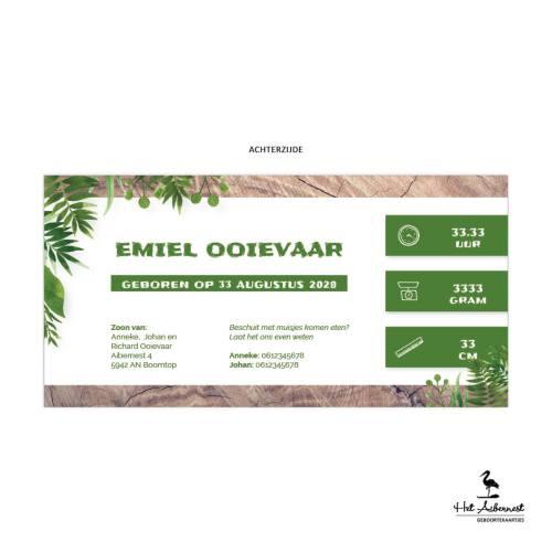 Emiel_web-az