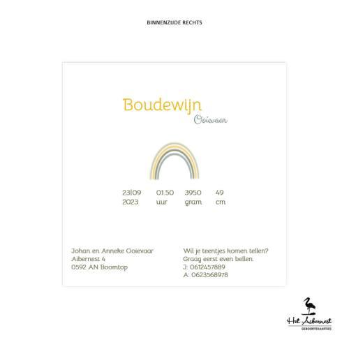Boudewijn_web-br