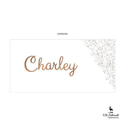 Charley_web-vz