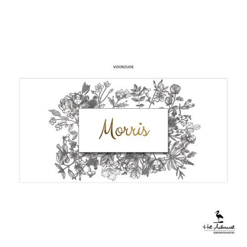 Morris_web-vz