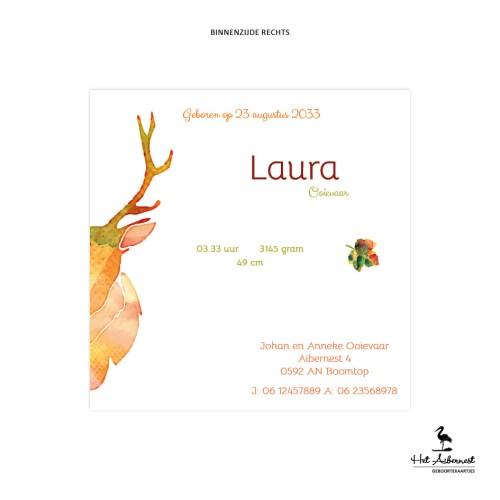 Laura_web-br