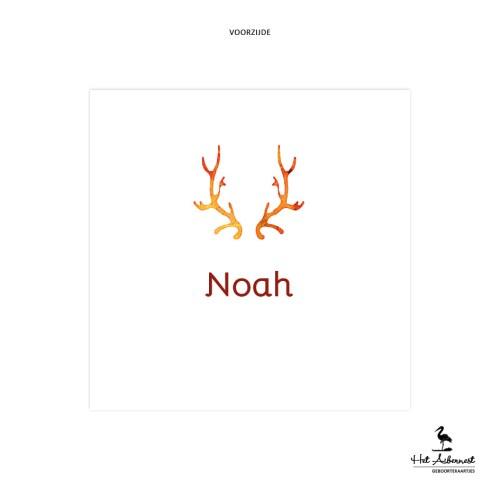 Noah_web-vz