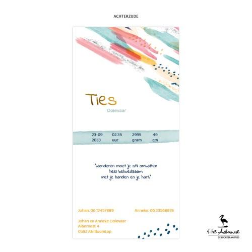 Ties_web-az