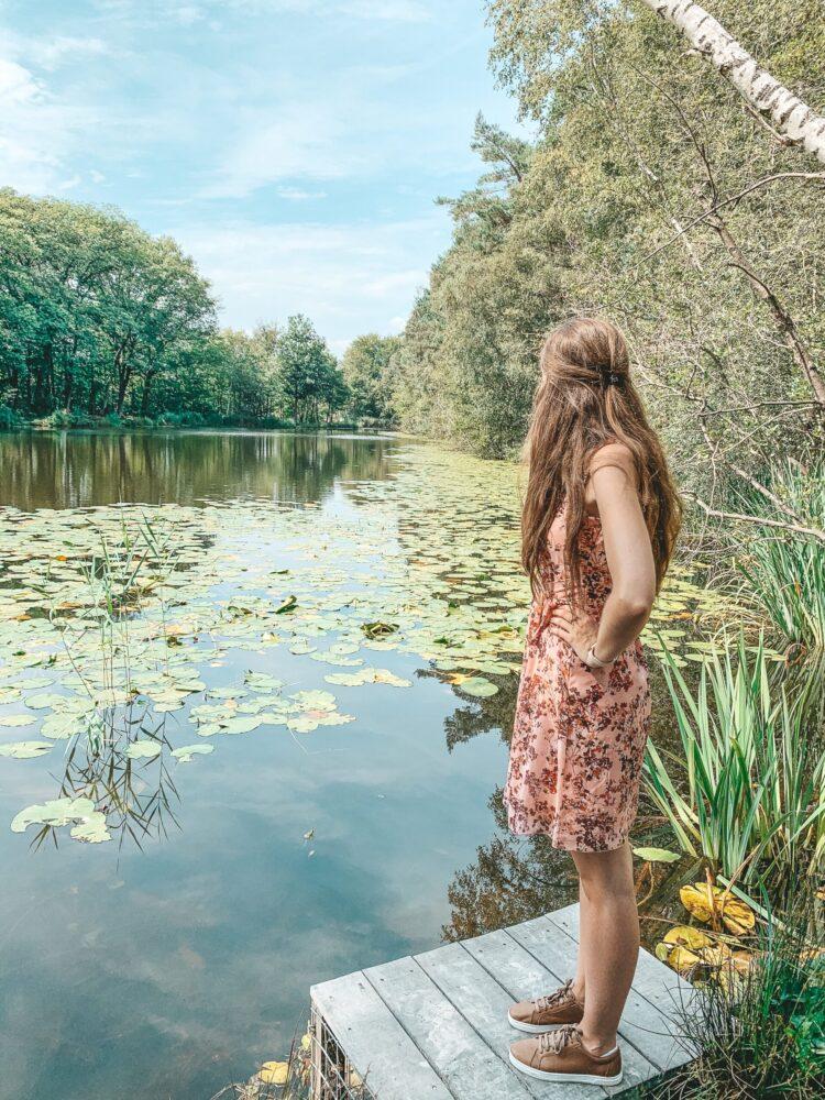 Het Gezinsleven - Uitstapjes - Natuur - Ontdek de mooiste plekken in de natuur in Limburg - Ven in de Brunssummerheide