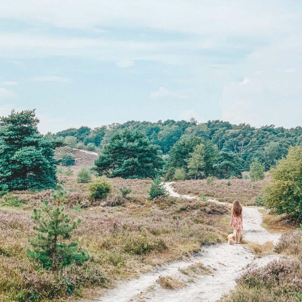 Het Gezinsleven - Uitstapjes - Natuur - Ontdek de mooiste plekken in de natuur in Limburg - Meisje wandelt door de Brunssummerheide