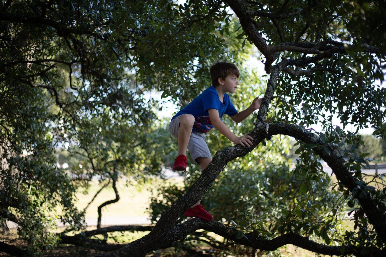 Het Gezinsleven - Moeder en Kind - Moeders - 5 tips: De beeldschermtijd van kinderen verminderen - Jongen speelt buiten in een boom