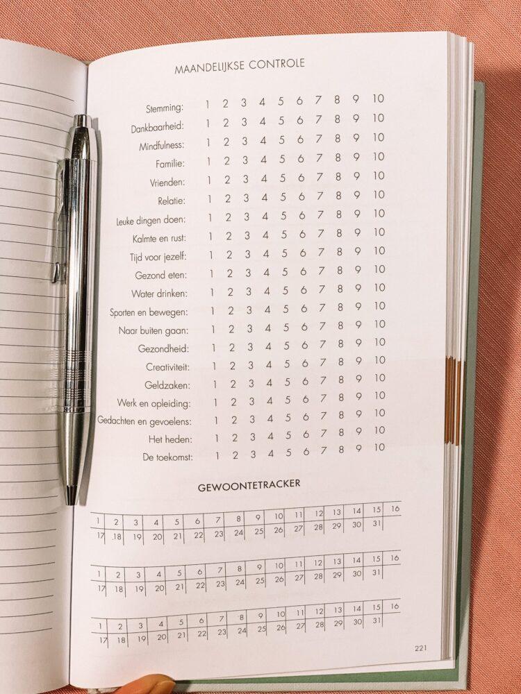 Het Gezinsleven - Lifestyle - Hobby's - Boeken - Review van het 6 minuten dagboek - Maandelijkse controle