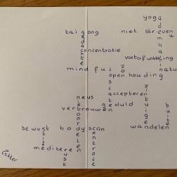kaart met alle geleerde dingen van de cursus