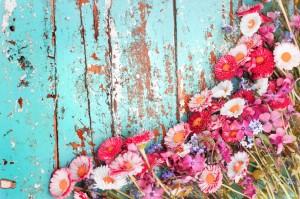 843x559 bloemen:what you think