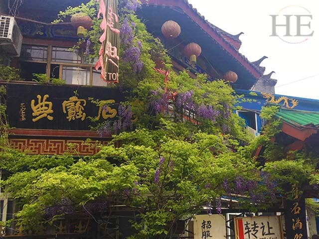 lush greenery and flowers adorn a storefront in luoyang china